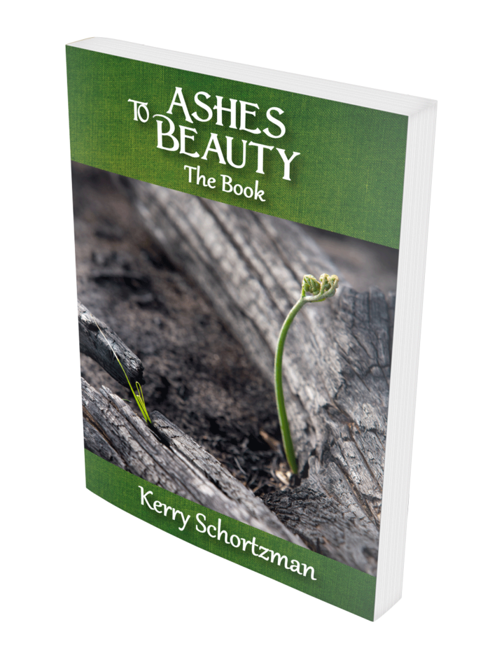 Ashes to Beauty the Book by Kerry Schortzman