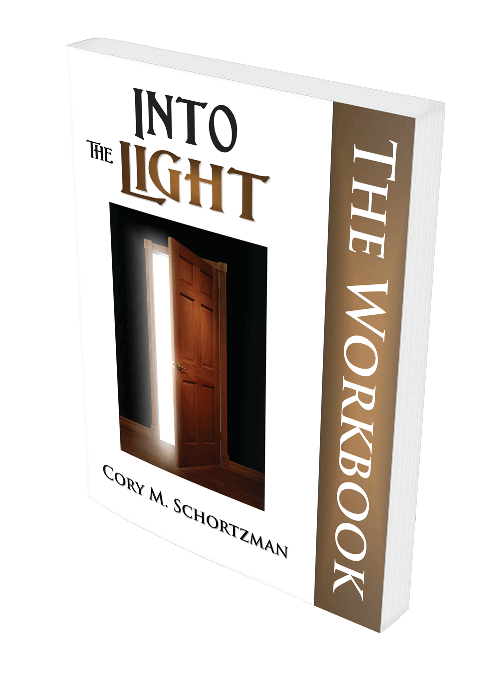 Into the Light the Workbook by Cory Schortzman